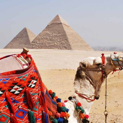 private Tour Cairo Luxor and Aswan.